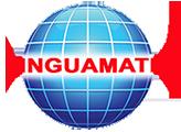Linguamatic S.A